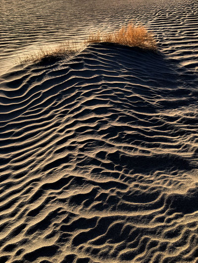 Sand Land Water Wave Pattern Beach High Angle View Pattern No People Rippled Nature Sand Dune Sea Tranquility Scenics - Nature Beauty In Nature Natural Pattern Backgrounds Day Outdoors Climate Arid Climate