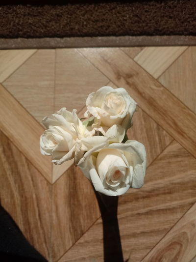 High angle view of rose bouquet on floor