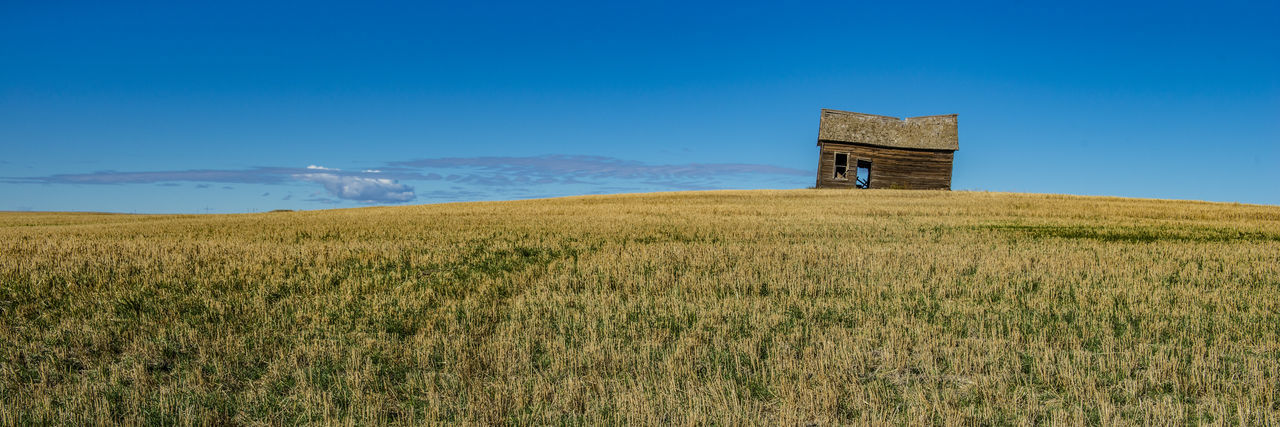 USA, MONTANA. Abandoned rural wooden house near Ledger Horizon Over Water Barn Shed Wooden House Migrating Heritage Scenic Landscapes Composition Historical Old Forgotten Architecture Ruined House Hopeless Depopulation, USA Sky Blue Empty Panorama Field Montana Abandoned Buildings Given Up