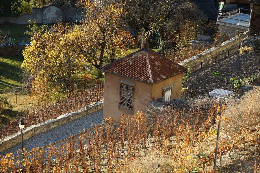 Schweiz Switzerland Leuk Leuk-Stadt Wein Weinberg Wallis