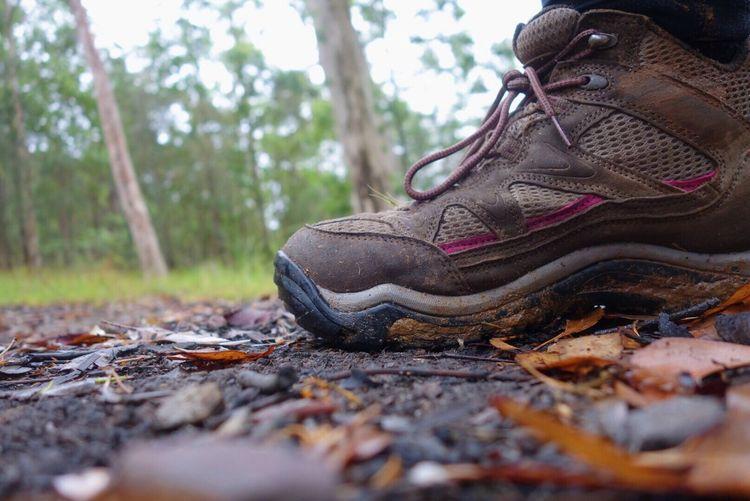 Hike Hike