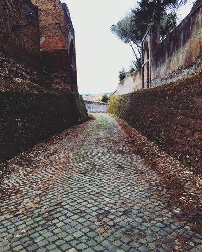 Lonely Relax. Rome Giardino