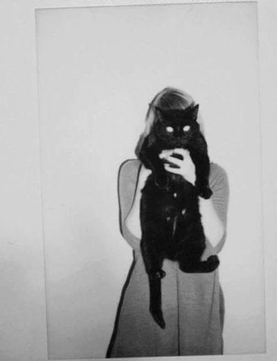 Cat♡ Black Cats