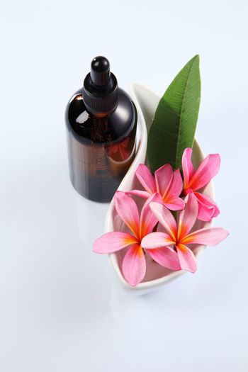 massage oil and frangipani flower Aromatherapy Beauty In Nature Bottle Close-up Container Flower Flower Head Flowering Plant Fragility Freshness Healthcare And Medicine Healthy Lifestyle High Angle View Indoors  Massage Oil Nature No People Petal Pink Color Plant Plant Part Spa Studio Shot Towel White Background