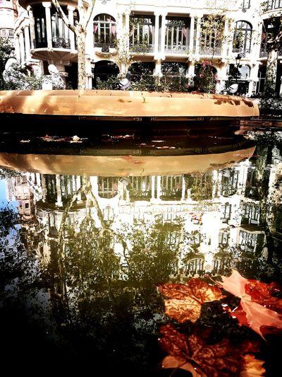 Reflection Architecture Casafuster Barcelona España Otoño 🍁 Autumn EyeEm Selects Huwei P9 Huwaei Photography Tardor/Autumn Photography Lifestyles
