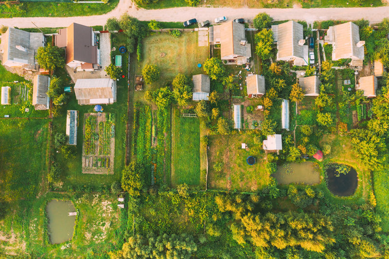 Aerial view of houses with trees