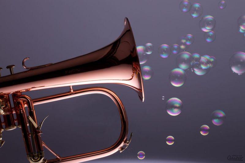 La musique légère Colorful Musical Instrument Music Creation Art Trumpet Trompette Bugle  Still Life Indoors  No People Close-up Studio Shot Single Object Bubble Multi Colored Shiny First Eyeem Photo