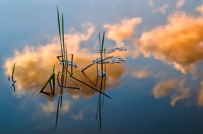 Reflection Of Sky In Lake