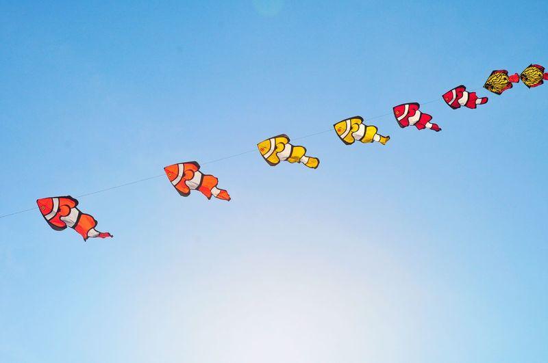 Traditional Kite Festival EyeEm Best Shots EyeEmNewHere EyeEm Selects EyeEm Gallery EyeEm Best Edits Traditional Kite Kite Flying Kite Festival Traditional Kite Festival Layangan Nemo Fish Flying Kite - Toy Sky Spread Wings Mid-air Kite Sky Only