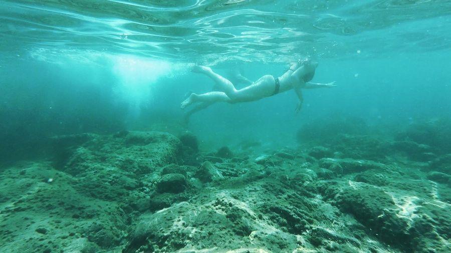 Deep UnderSea Underwater Swimming Sea Water Sea Life Scuba Diving Full Length Snorkeling Underwater Diving Diving Into Water Diving Wetsuit Ocean Floor