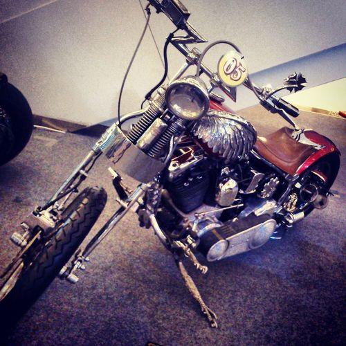Harley Davidson Clasic Motorcycles