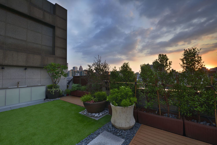 Warm and bright home environment, artificial turf and plank with the use of space. Artificial Turf Beautiful Home Life Modern Architecture Beauty In Nature Board Building Exterior Built Structure City Comfortable Day Fresh Garden Design Grass Landscape Nature No People Outdoors Plant Sky Space Style Sunset Tree
