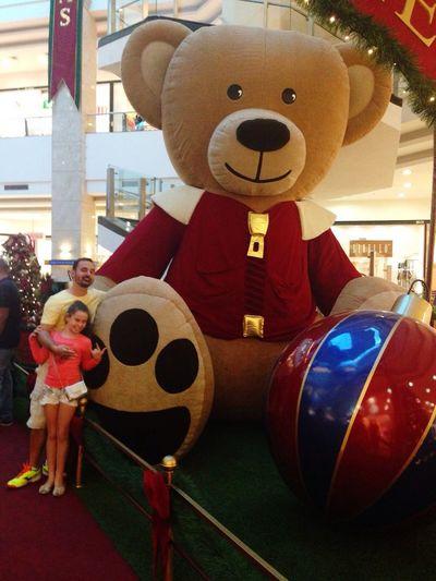 How You Celebrate Holidays MerryChristmas Natal Em Natal Urso Ursos Feliz Festas