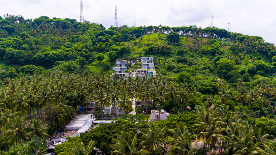 Svarga resort in the middle of the Lombok island forest. Plant Tree Building Exterior Architecture Built Structure Green Color Growth Day Nature Foliage No People Building Lush Foliage Sky High Angle View Outdoors Beauty In Nature House Mode Of Transportation Residential District Lombok Lombok-Indonesia Forest Hotel Hotel View