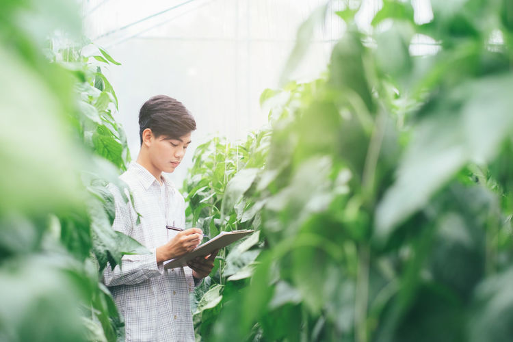Man Analyzing Plants In Greenhouse