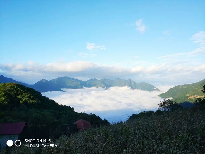 Mountain Landscape Mountain Range Cloud - Sky Sky Agriculture Scenics Nature Field Tranquility Forest Outdoors Tree Tea Crop Beauty In Nature Rural Scene Blue Fog No People Day