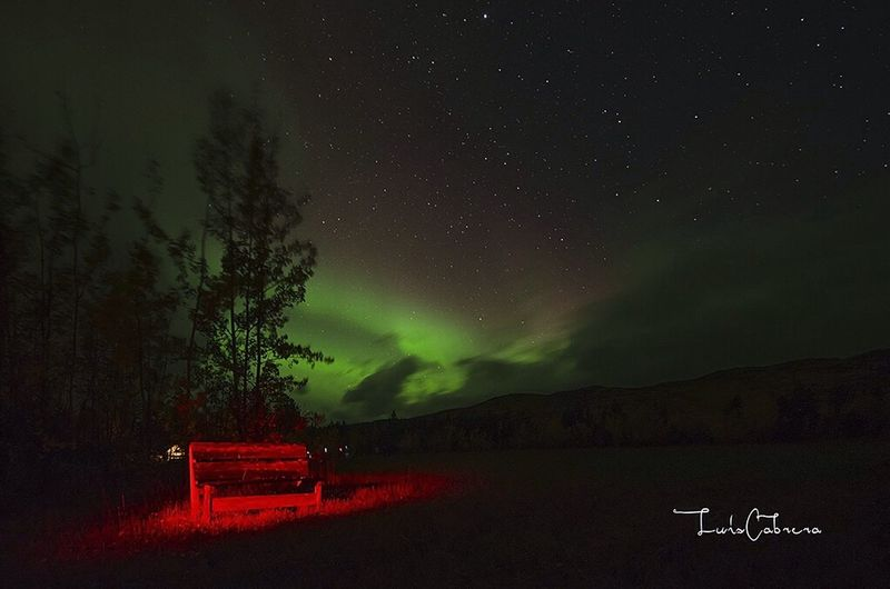 September/Septiembre 2015, Aurora Aurora Borealis Boreal Nothernlights Nature Fotografia Fotografiadenaturaleza Fotografianocturna Landscape Landscape_photography Yukon