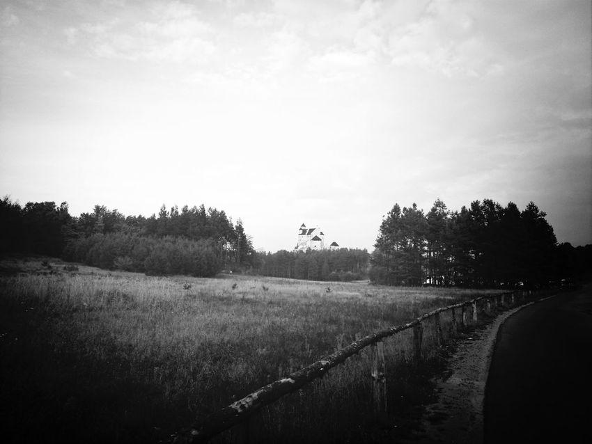 Monochrome Black And White Silhouette Landscape