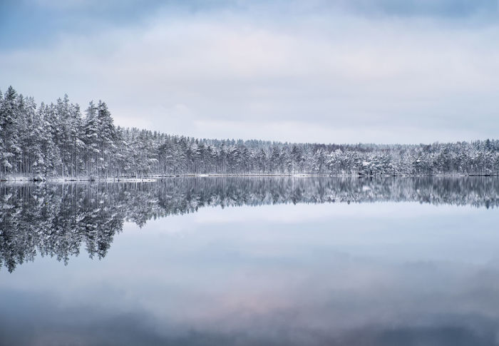 Scenic landscape with forest and lake at winter evening in Finland Moment Of Silence Nature Reflection Tranquil Tranquility Beauty In Nature Blue Cold Temperature Forest Idyllic Lake Lake View Landscape Nature No People Outdoors Reflection Scenics Snow Tranquil Scene Tranquility Tree Water White Winter
