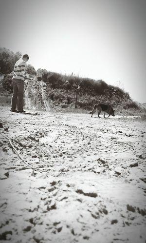 On A Hike Family Gorgeous Day Dog German Shepherd Allegan Michigan LGG2