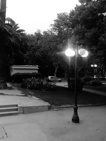 Adelantado a la noche Night Lights Barroco Austral Viña Del Mar Celular Black And White Photography Chile♥ Street Street Light