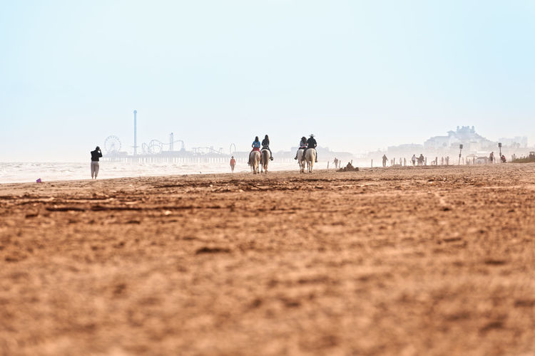Horses Group Of People Nature Clear Sky Lifestyles Leisure Activity Outdoors Summer Good Mood Enjoying Life Beach