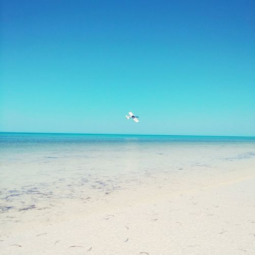 Isla Holbox Water Sand Beach Airplane Holbox Island Paradise First Eyeem Photo