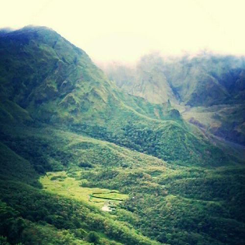 Selamat pagi, selamat tersenyum sepanjang hari. Semoga senyuman itu bagai kebahagian para pendaki yang bertemu puncak Talung. Betapa indahnya. Lembah Ramma' terlihat dr atas sini. Lembah berwarna hijau mudah itu. Mari berdoa bagi mereka yang menikmati pagi di sana Lembah Ramma Puncak  Talung Bawakaraeng Lembanna Gowa sulawesiselatan indonesia Pegunungan Alam Perjalanan Pendakian Refleksi Pecinta Philosopia Beautiful Fresh Green Instagram Instanature