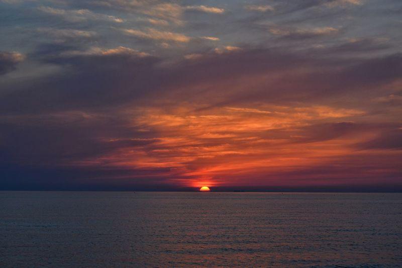 Horizon The