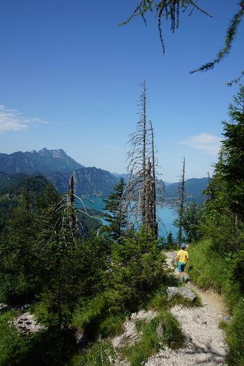Hiking Attrsee