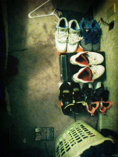 Sneakerfein
