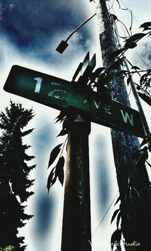 Taking Photos Photography Walking Around Outdoors Old Queenanne Seattle Street Signs Streetlights Creepy