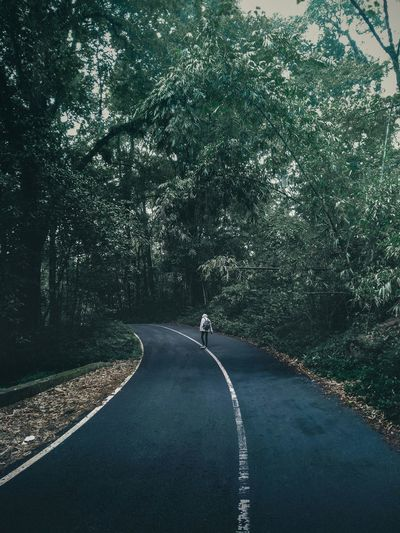 Man walking on road amidst trees
