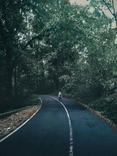 Man Walking On Road Amidst Trees