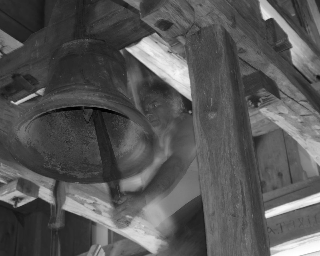 no people, wood - material, low angle view, architecture, metal, vertebrate, indoors, animal, old, animal themes, day, hanging, bell, close-up, built structure, one animal, focus on foreground, history, animal wildlife, ceiling, roof beam