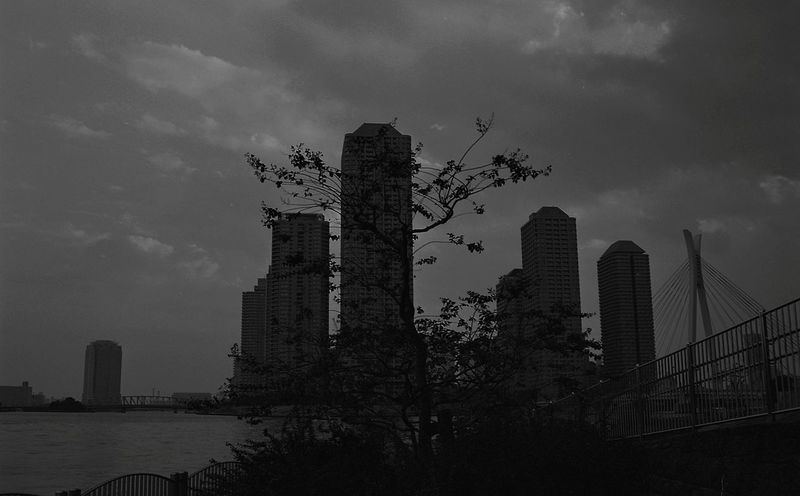 Skyscraper Urban Skyline Architecture Business Finance And Industry City Cityscape Building Exterior B&W✨ B&w Black & White Blanc Et Noir B&WPhoto B&w Photography Black & White Photography Black And White Friday Monochrome Monochromatic Monochrome_Photography Monochrome Photography Japon Japan