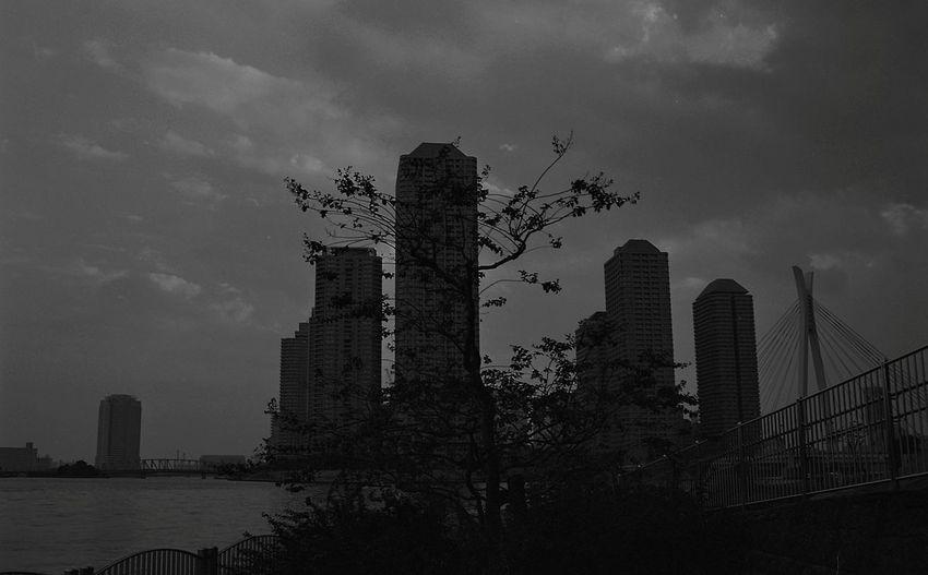 Skyscraper Urban Skyline Architecture Business Finance And Industry City Cityscape Building Exterior B&W✨ B&w Black & White Blanc Et Noir B&WPhoto B&w Photography Black & White Photography Black And White Friday Monochrome Monochromatic Monochrome_Photography Monochrome Photography Japon Japan
