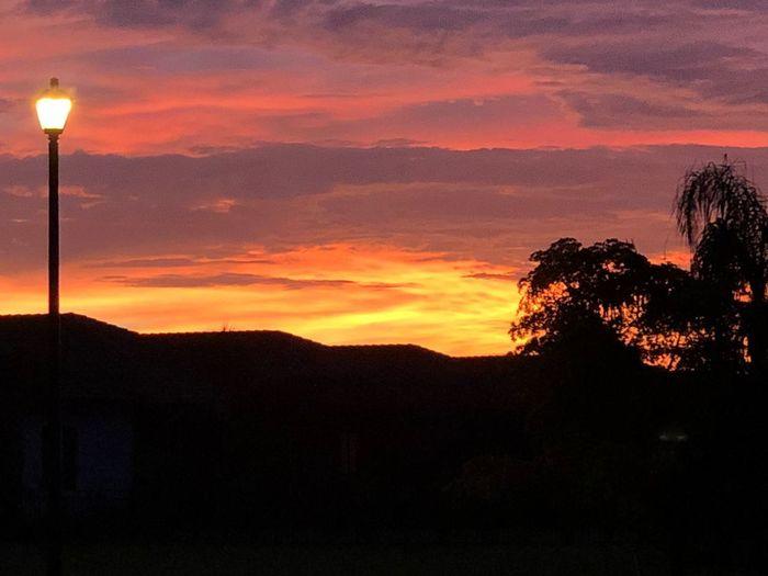 Vivo en una esquinita del mundo donde el sol pincha las nubes con un pincel multicolor y como acuarela, me chorrea sueños de esperanzas y ecos de carcajadas... me moja el recuerdo y me trae el futuro de a poquito para que aprecie mejor mi hoy... #fortmyers #gateway #Atardecer #frontyard #myfrontyardisbetterthanyours #mefuienuna ShotOnIphone IPhoneX Iphonephotography IPhoneography Sunset Sky Silhouette Tree Plant Dramatic Sky Orange Color Cloud - Sky
