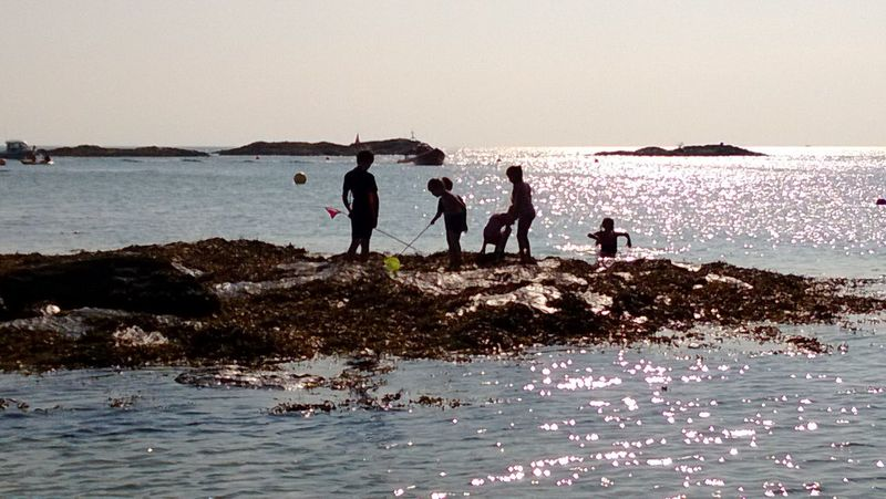 Rockpooling in setting sun Silhouette Sea Outdoors Water Nature Sky Sunset Seaside Beach Sea Rockpooling Down By The Sea Crabbing Sunlight On Water Holidays Holidays By The Sea