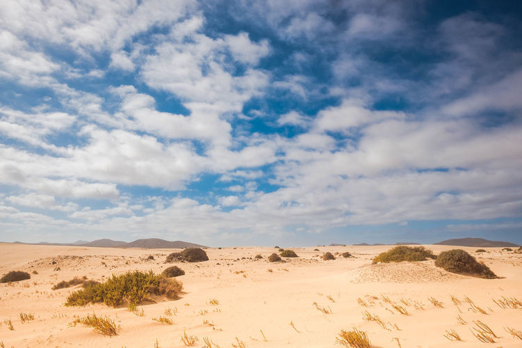 desert landscape with mountains and cloudy sky Fuerteventura Arid Climate Beauty In Nature Climate Change Clouds And Sky Day Desert Infinity Landscape Mountain Nature No People Outdoors Sand Sand Dune Scenics Silence Sky Solitude Summer Sunlight Tranquil Scene Tranquility Travel Destinations