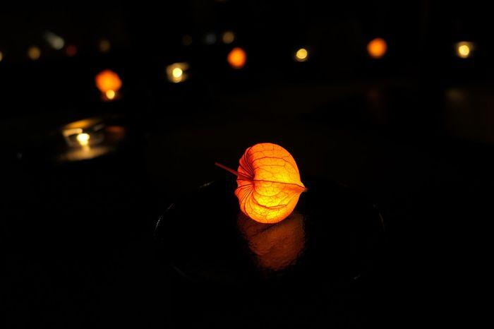 Summer Japan Light Obon お盆