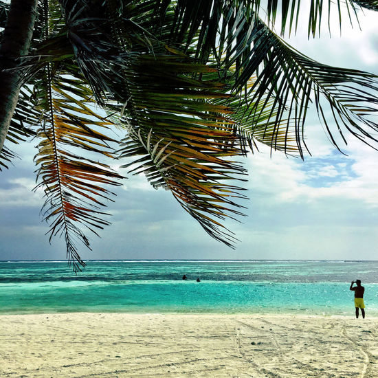 Maldives Taking Photos Of People Taking Photos Palm Trees Blue Water Indian Ocean Beachphotography Reef Crystal Clear Waters Done That.