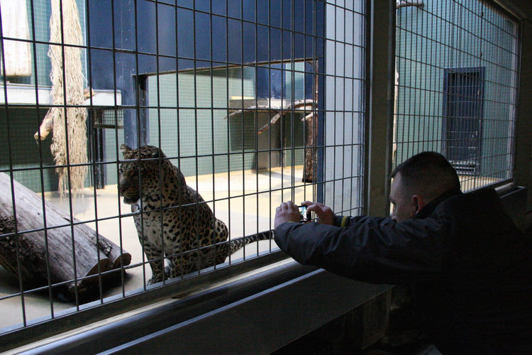 Attraction Cage Coward Holding Indoors  Locked In Mobile Phone No Distance NO RESPECT Person Photography Side View Zoo Zoo Animals