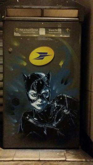 C215 Streetart Catwoman Festival America