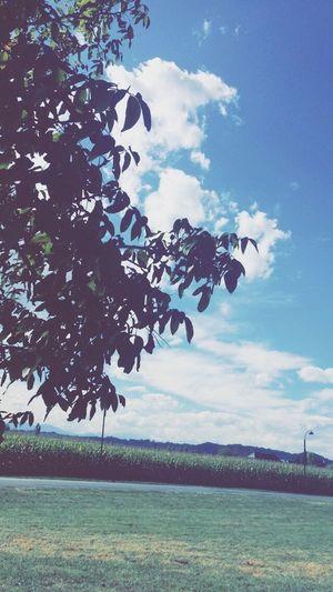 Taking Photos Landscape Sunshine Sky