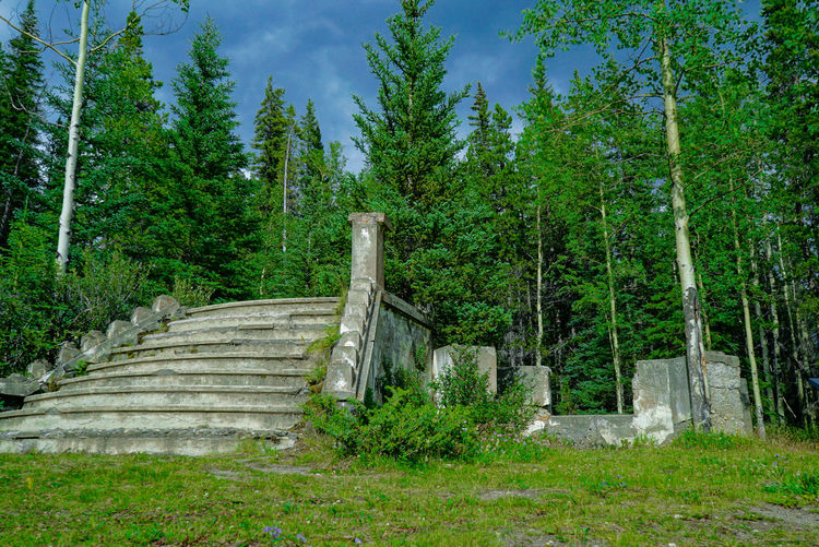 Banff National Park  Ruins Architecture Beauty In Nature Day Foliage Forest Green Color Growth Land Lush Foliage Nature No People Non-urban Scene Outdoors Plant Scenics - Nature Sky Staircase Tranquil Scene Tranquility Tree WoodLand