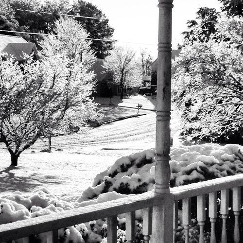 Its Beautiful Outside !!