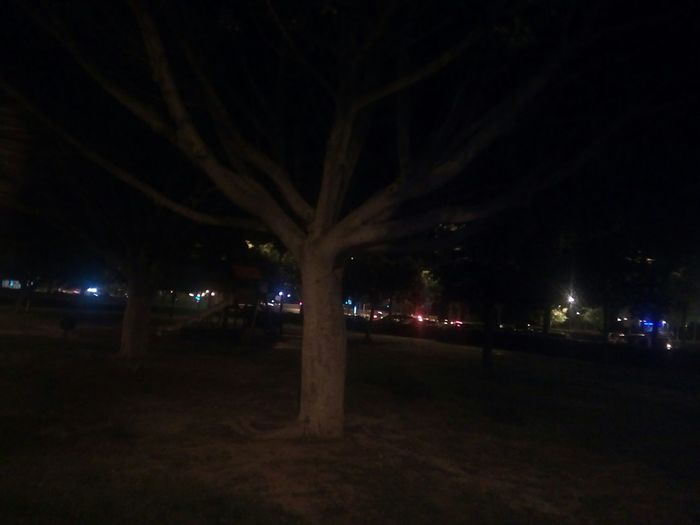 La Soledad Entre La Multitud Night Illuminated Lighting Equipment Street Light City Outdoors No People Sky