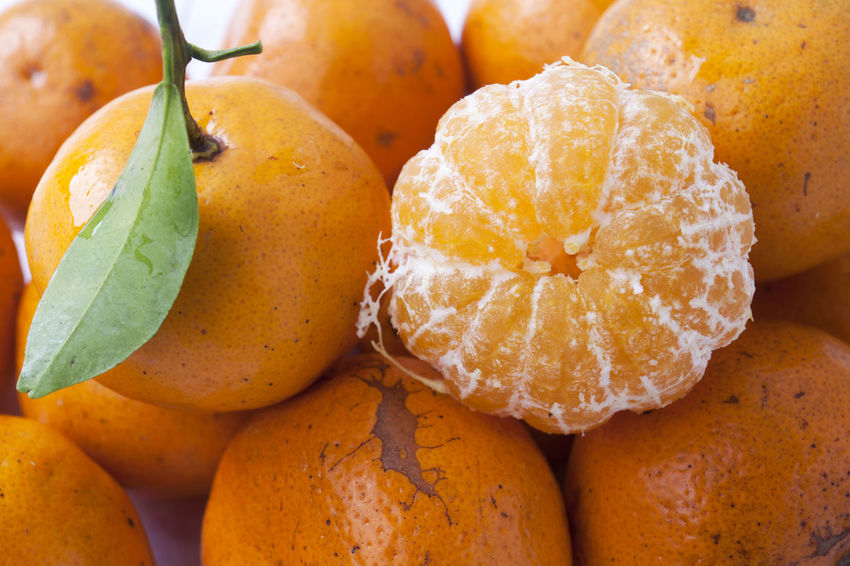 Close Up of Orange Fruit Close-up Food Food And Drink Freshness Fruit Healthy Eating No People Orange Orange Fruit Tropical Fruit Vitamin C White Background