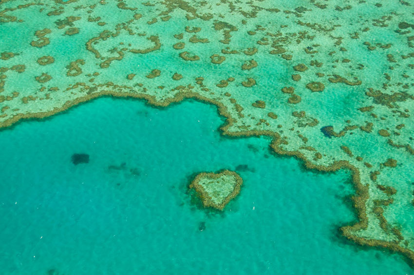 An aerial shot of a section of the beautiful Great Barrier Reef, with many shades of blue and turquoise, and the iconic heart shaped Heart Reef visible. Australia Bleaching Care Global Warming Heart Reef Love Planet Earth Scenic Valentine's Day  Aerial Aerial View Azure Boat Climate Change Coral Coral Reef Great Barrier Reef Hardy Heart Ocean Ocean Life Pacific Ocean Sea Sea Level Tropical The Great Outdoors - 2018 EyeEm Awards